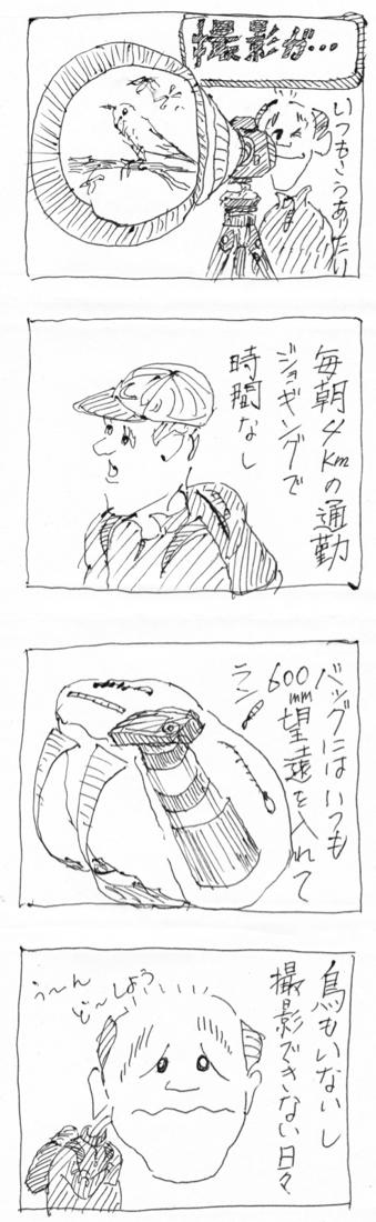 2017-07-11撮影が・・・ (1).jpg